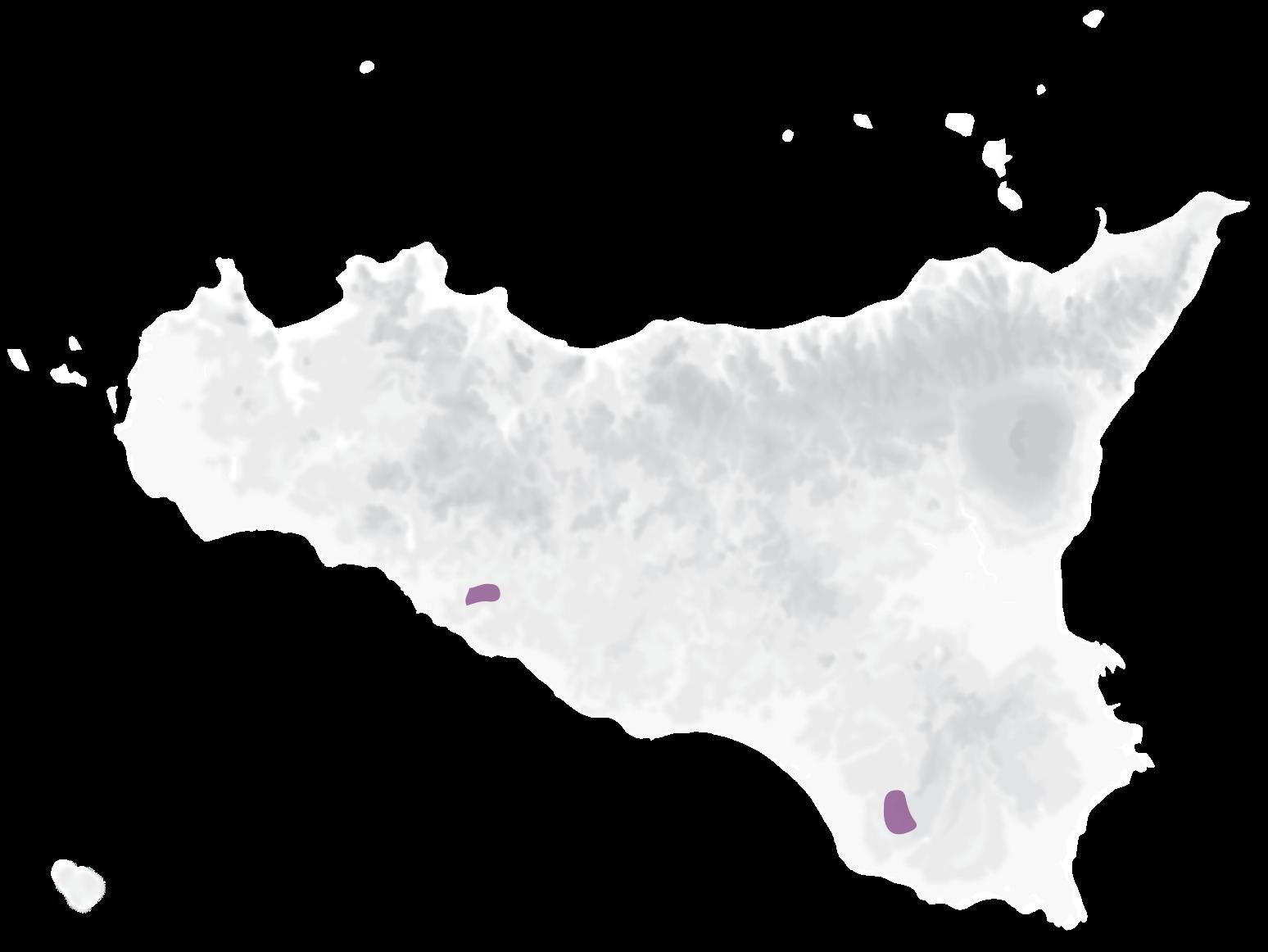 Mappa vitigni Frappato