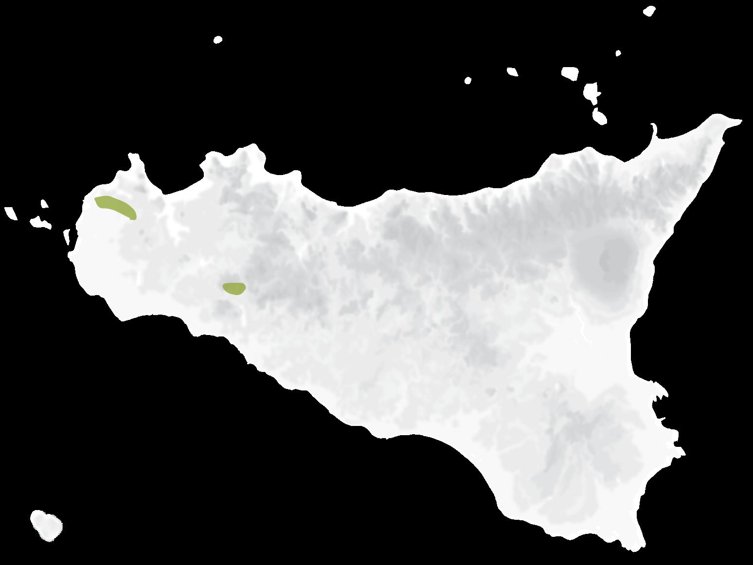 Mappa vitigni Grillo