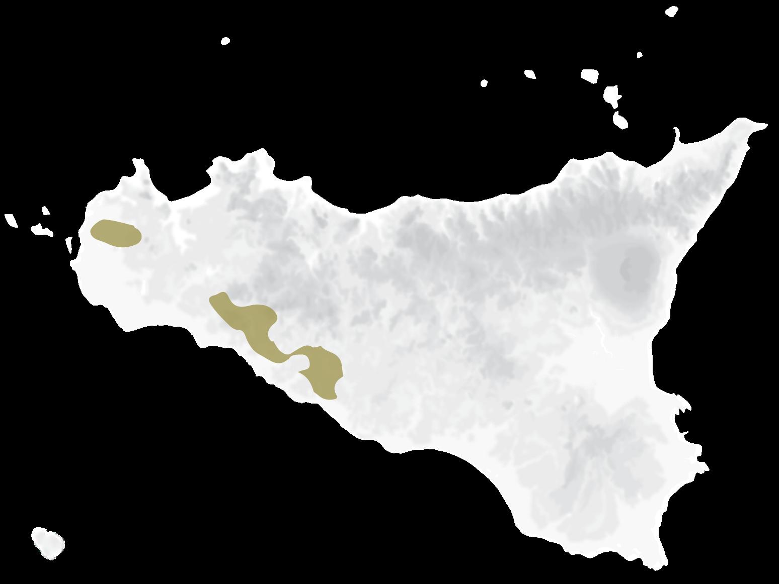 Mappa vitigni Insolia