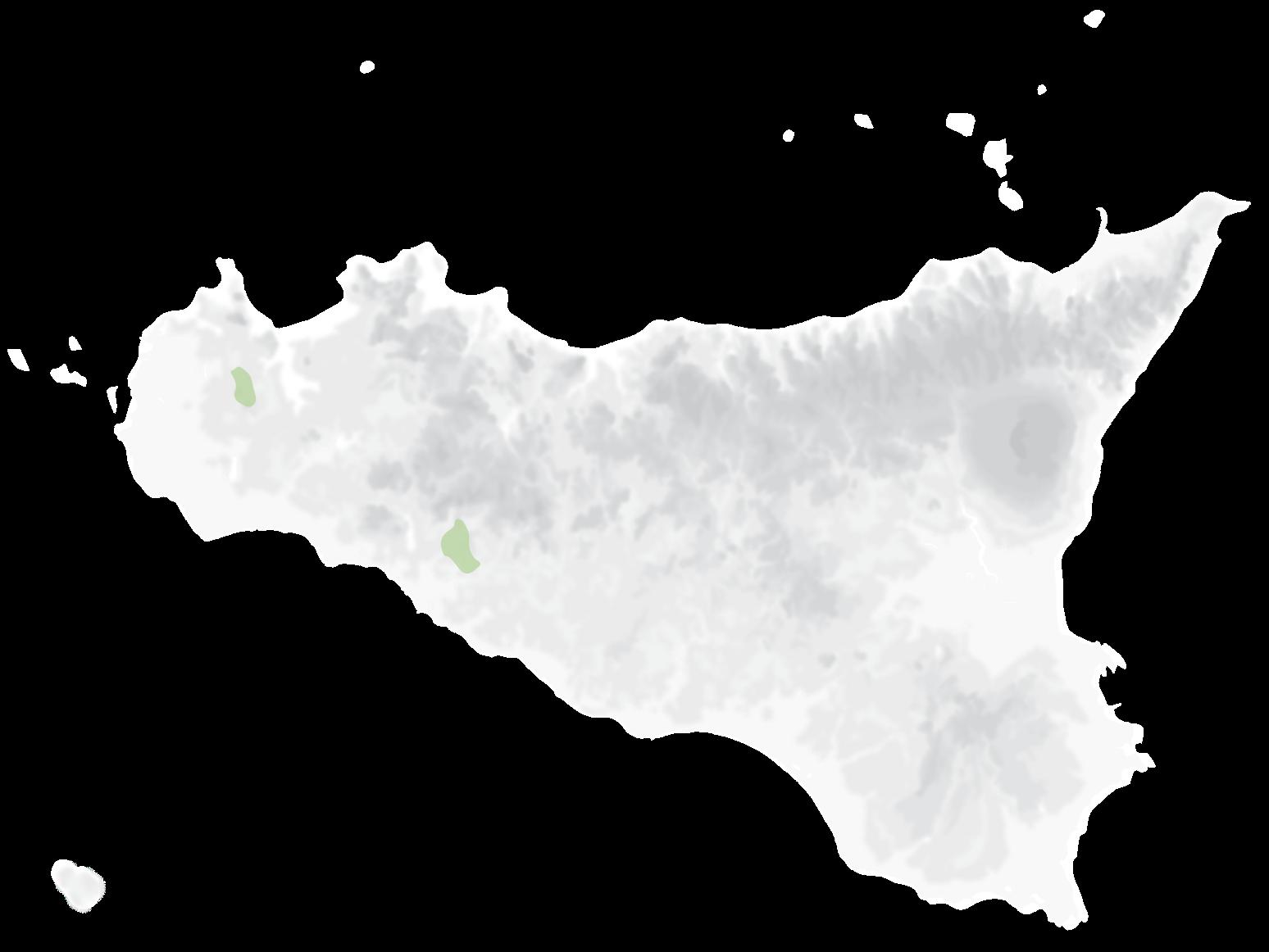Mappa vitigni Moscato Bianco
