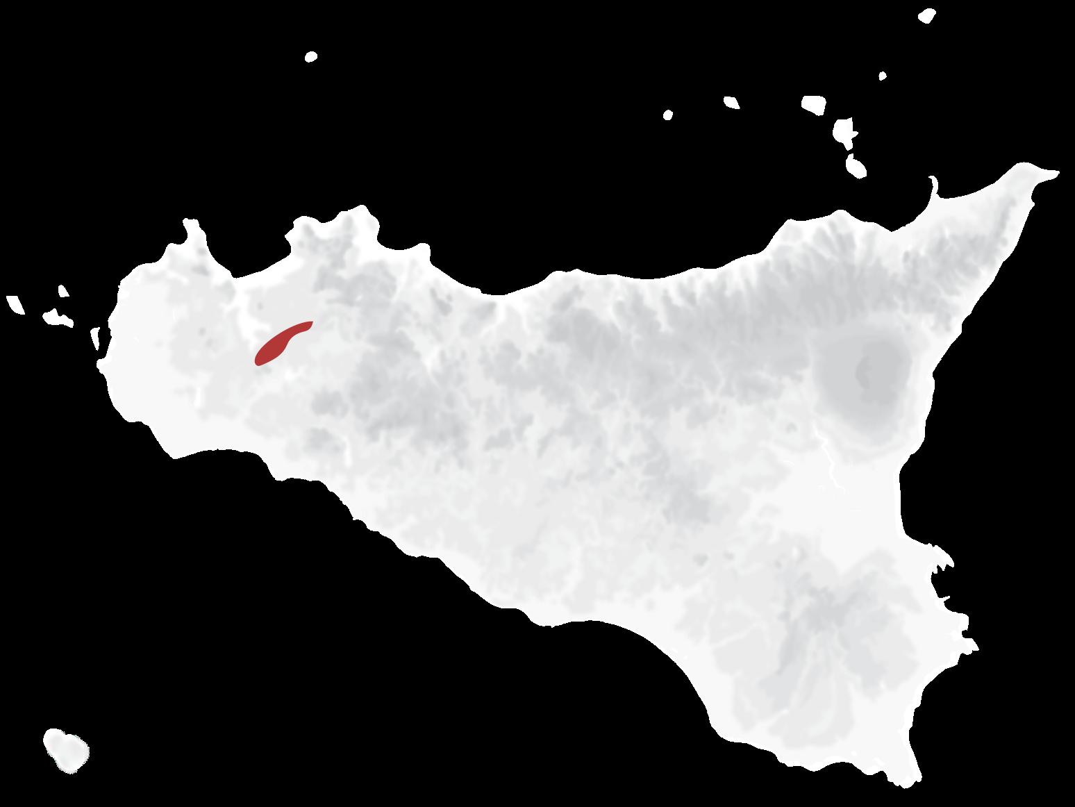 Mappa vitigni Syrah