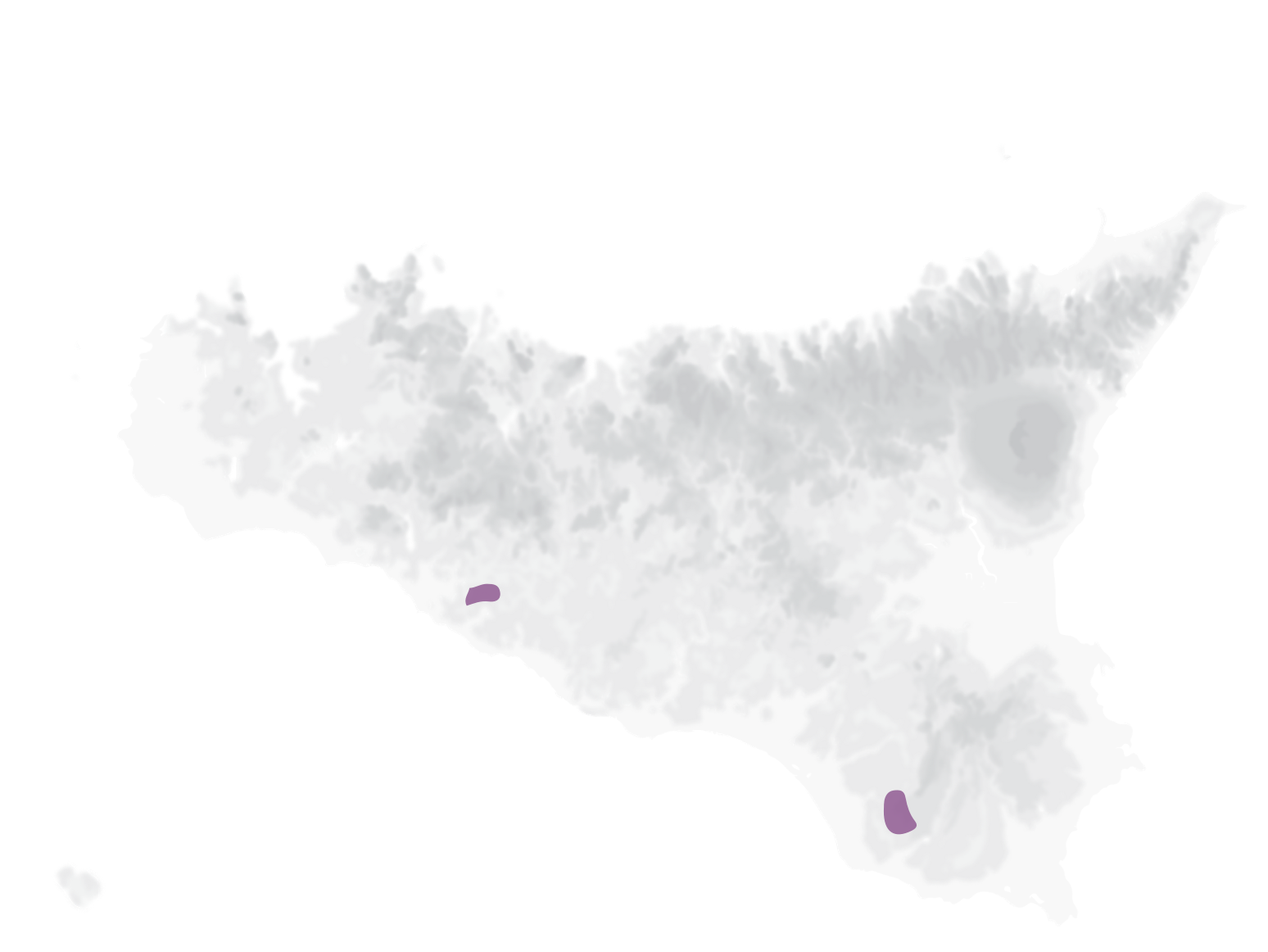 Frappato grape varieties map