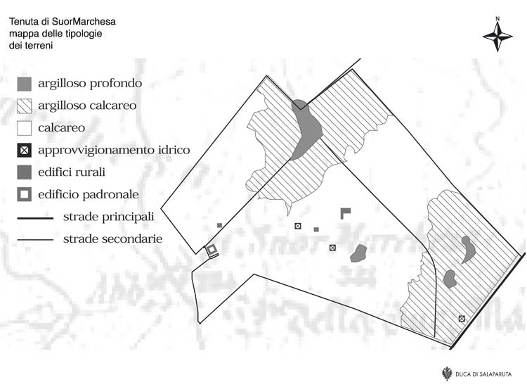 Land-typology estate map